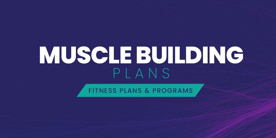 Muscle Building Plans